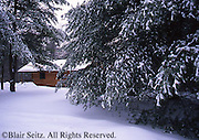 Hill Creek State Park, Cabin, winter snow, PA landscapes