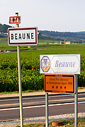 road sign vineyard beaune cote de beaune burgundy france