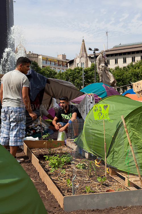 """Garden and campers at protest camp at Placa de Catalunya, Barcelona, Spain. The signs read: """"Animals and music will make you a better person; put a dog and a flute in your life"""". The square has been relatively quiet since police attacked and beat protestors on May 27 2011."""