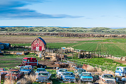 An old truck farm, Treasure Valley, Idaho