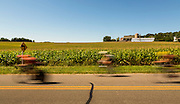 Rides speed downhill on Shady Oak Lane in Verona, Wis., during the Ironman Wisconsin triathlon. (Photo © Andy Manis)