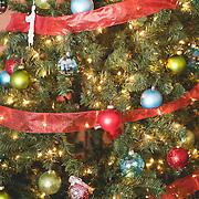 Sabrina and Ben_Christmas