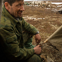 North of the Arctic Circle in Russia, Vasily Chuprov, a nomadic Komi reindeer herder, drinks tea in the door of a chum (tepee).