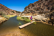 Hiker crossing the stream at Water Canyon, Santa Rosa Island, Channel Islands National Park, California USA