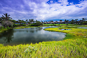 Lagoon at the Four Seasons Hualalai, Kohala Coast, Hawaii USA