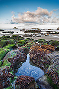 Oregon Islands National Wildlife Refuge, at Bandon Beach, Oregon