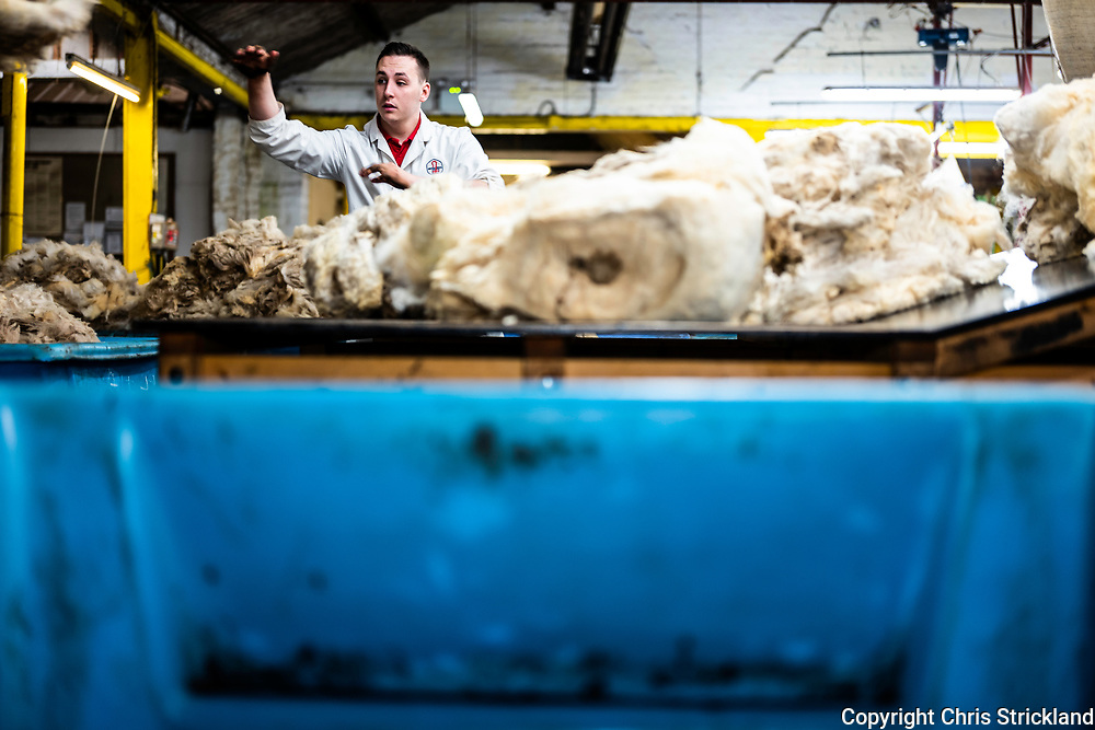 Galashiels, Scottish Borders, UK. November 2018. British Wool's depot in Galashiels, the largest in Scotland. 3,000,000 kilos of wool is processed at Gala per annum, each fleece weighs 2kg, and a single grader sorts through 7,000 kilos a day. The wool is sold to premium fashion brands such as Harris Tweed.