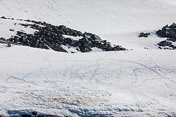 Penguin Footprints, Spert Island, Off Trinity Island, Antarctica