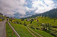 Golzern,  Switzerland, the path to the village.