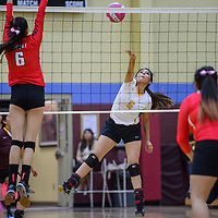 Rehoboth Lynx Halle Lizer (6) spikes the ball at the Crownpoint Eagles Thursday at Rehoboth High School.