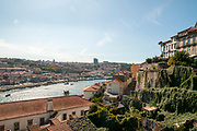 Porto cityscape and Douro river as seen from Cathedral hill looking west. Porto, Portugal