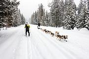 Mirror Lake Highway (SR150) in the winter. Uintas, Utah