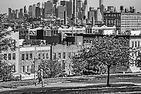 Jogger @ Sunset Park, Brooklyn (monochrome)