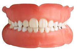 teeth 001 Teeth Dentures