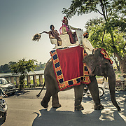 Baraat. The grooms procession in Rajasthan. The groom, accompnied by his sister, is seated on a decorated elephant. Udaipur, 2010.