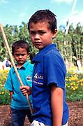 Boys, Pitcairn Island<br />