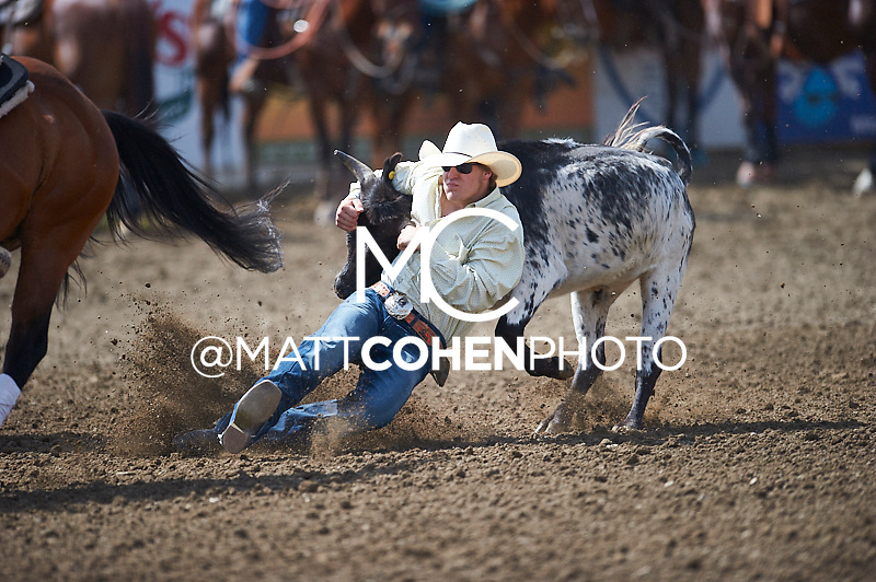 Steer wrestler Gus Hansen of Payson, UT competes at the Redding Rodeo in Redding, CA.<br /> <br /> <br /> UNEDITED LOW-RES PREVIEW<br /> <br /> <br /> File shown may be an unedited low resolution version used as a proof only. All prints are 100% guaranteed for quality. Sizes 8x10+ come with a version for personal social media. I am currently not selling downloads for commercial/brand use.