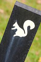 BEETSTERZWAAG - 150 meter markering met eekhorn. De Friese golfclub Lauswolt op Landgoed Lauswolt. COPYRIGHT KOEN SUYK