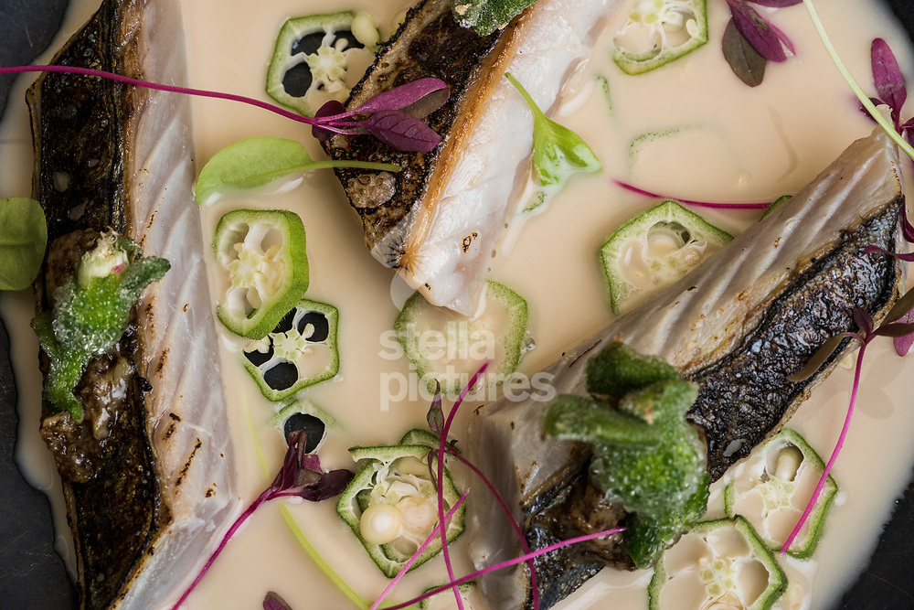 Smoke fsh mackerel and tigernut at Ikoyi as part of an Evening Standard restaurant review. <br /> Picture by Daniel Hambury/Stella Pictures Ltd 07813022858<br /> 31/07/2017