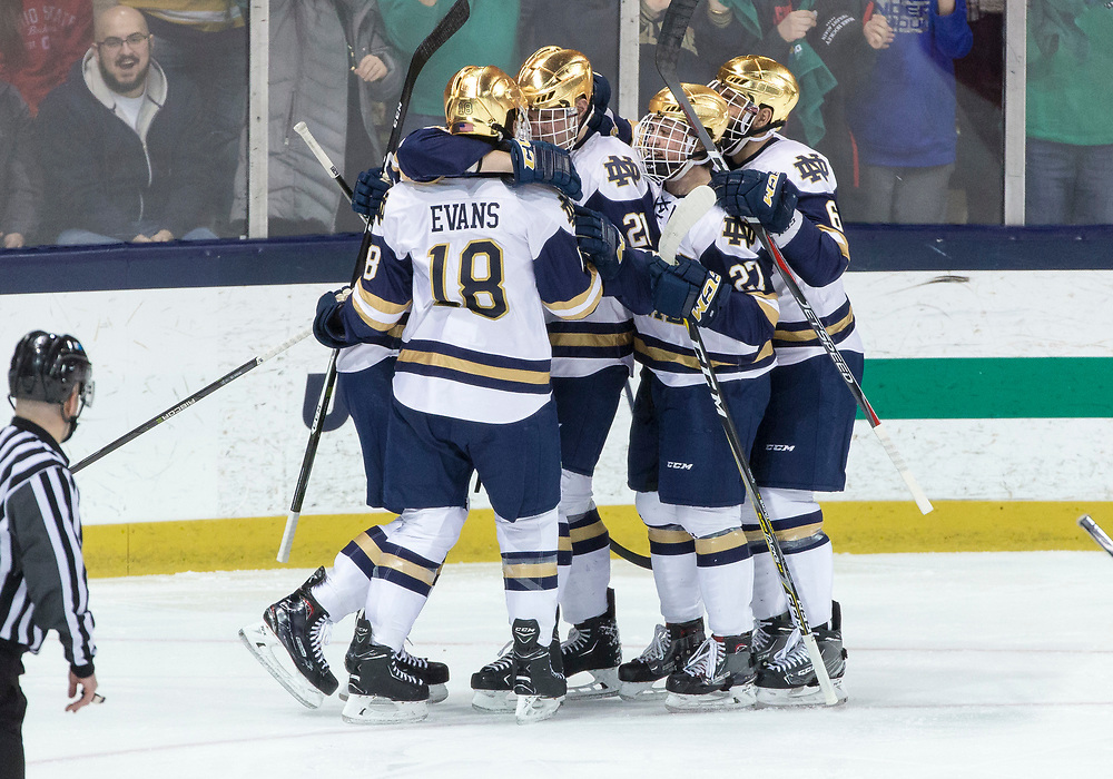 March 17, 2018:  Notre Dame players celebrate goal by Notre Dame forward Bo Brauer (29) during NCAA Hockey game action between the Notre Dame Fighting Irish and the Ohio State Buckeyes at Compton Family Ice Arena in South Bend, Indiana.  Notre Dame defeated Ohio State 3-2 in overtime.  John Mersits/CSM
