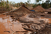 Floating tree trunks, a devastated landscape, mounds of gravel to support ramps for the separation of sediments with gold in the Peruvian Amazon.
