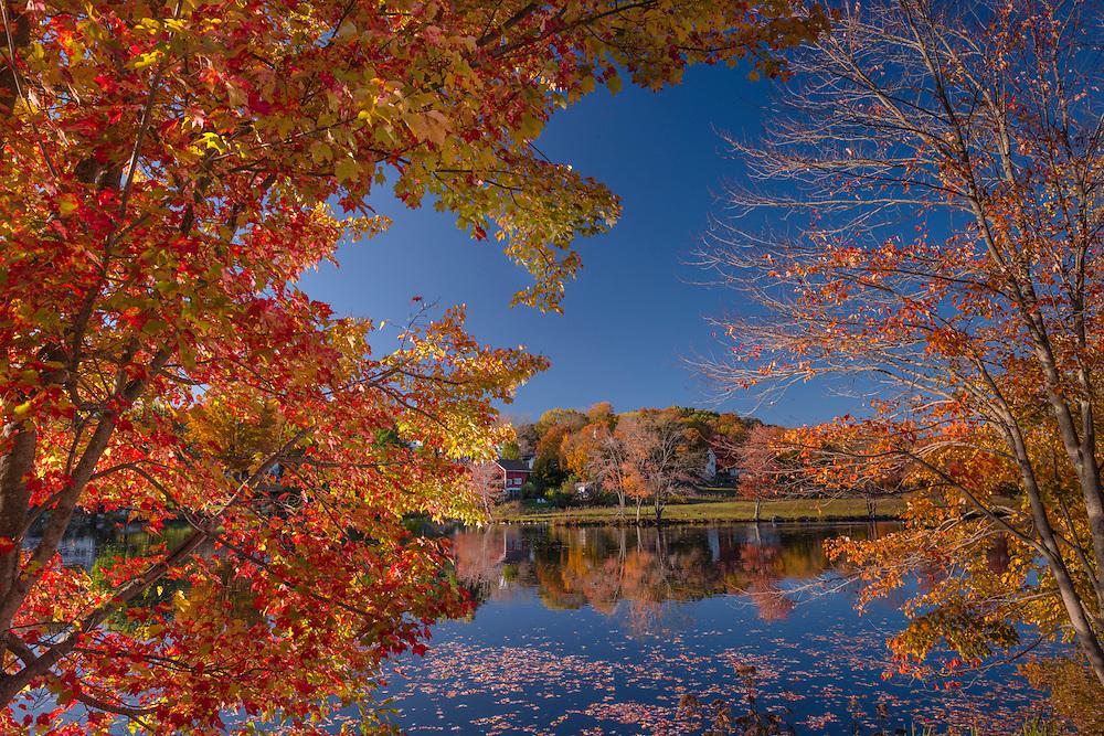 Fall foliage frames view of pond, Stafford, CT