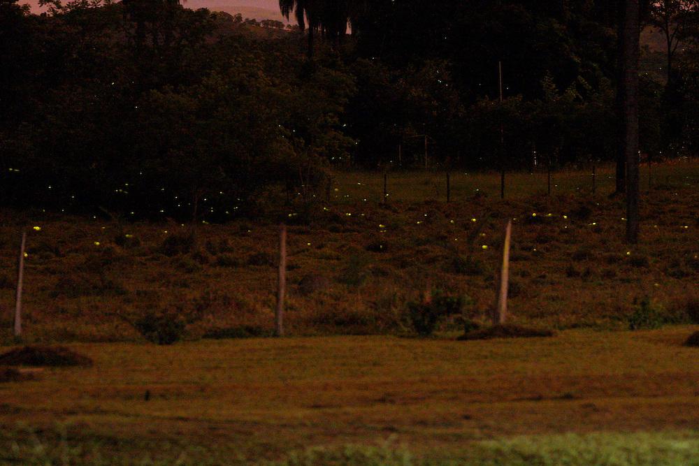 Distrito dos Maias, municipio de Inhauma, MG...Cena noturna de uma paisagem com vaga-lumes...The landscape night scene with fireflies...Foto: LEO DRUMOND / NITRO