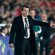 Brazil's coach Dunga during their a international friendly soccer match Turkey betwen Brazil at Sukru Saracoglu Arena in istanbul November 12, 2014. Photo by Aykut AKICI/TURKPIX