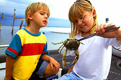 Stock photo of a young boy looking at a crab held by a girl