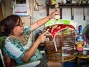 """08 FEBRUARY 2017 - BANGKOK, THAILAND: A woman does detail work on the artisan bird cages she and her husband make in their home in Pom Mahakan. The residents of the old fort are known for their community of song bird enthusiasts and artisan bird cage makers. More than 40 families still live in Pom Mahakan, a slum community in a 19th century fort in Bangkok. City officials are trying to move them out of the fort but members of the community refuse to leave. NGOs and historic preservation organizations are working with the community to help them find a way to stay. After several deadlines passed, residents were told that they have to leave by the end of February. They submitted another proposal to the city this week to turn their community into a """"living heritage museum"""" and hope to get the eviction deadline extended until late March.       PHOTO BY JACK KURTZ"""