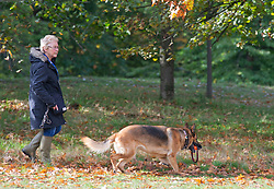 ©Licensed to London News Pictures 14/10/2020  <br /> Greenwich, UK. A lady walking her dog. Autumn sunshine makes a brief appearance today in Greenwich park, Greenwich, London. Photo credit:Grant Falvey/LNP