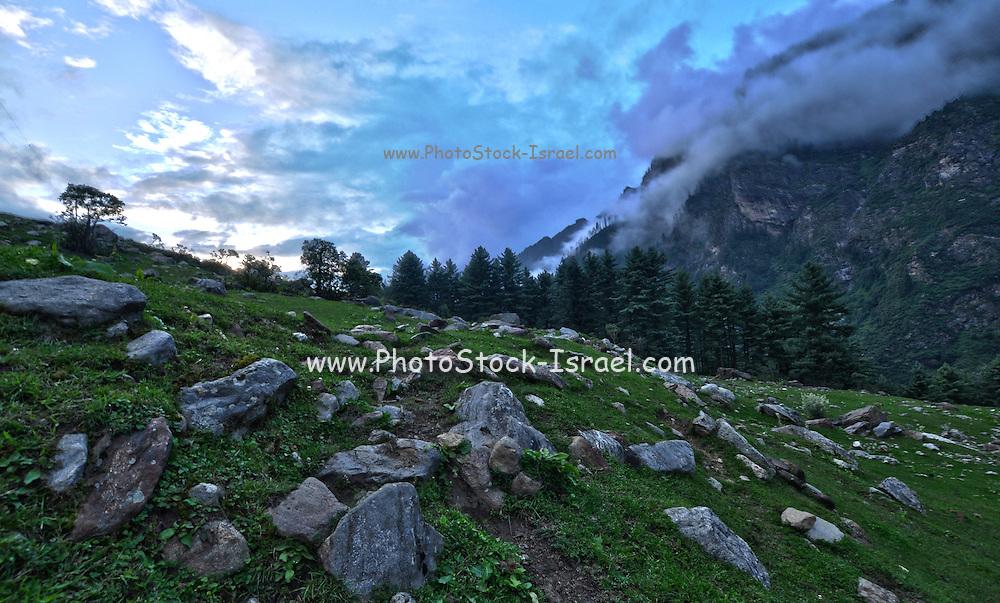 India, Himachal Pradesh landscape