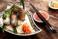 Vietnamese Fresh Spring Rolls,  Goi Cuon