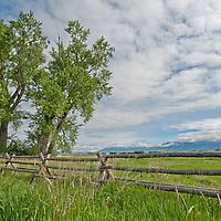 Pastures spread below the Bridger Mountains in Montana's Gallatin Valley, near Bozeman.
