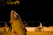 Pirapora_MG, Brasil...Escultura de peixe em Pirapora, Minas Gerais...Fish esculture in Pirapora, Minas Gerais...Foto: JOAO MARCOS ROSA /  NITRO