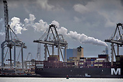 Nederland, the Netherlands, Rotterdam, 3-9-2019 Containeroverslag in de rotterdamse haven op de 2e maasvlakte, bij APM en euromax terminal, terminals. Op de achtergrond de rook uit de schoorsteen van de engie centrale, electriciteitscentralke, elektriciteitscentrale, fossiele,brandstof, co2,uitstoot,stikstof,Foto: Flip Franssen