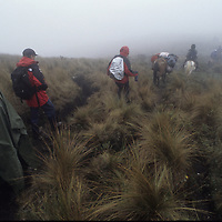 Hikers in fog above Mangalpa.