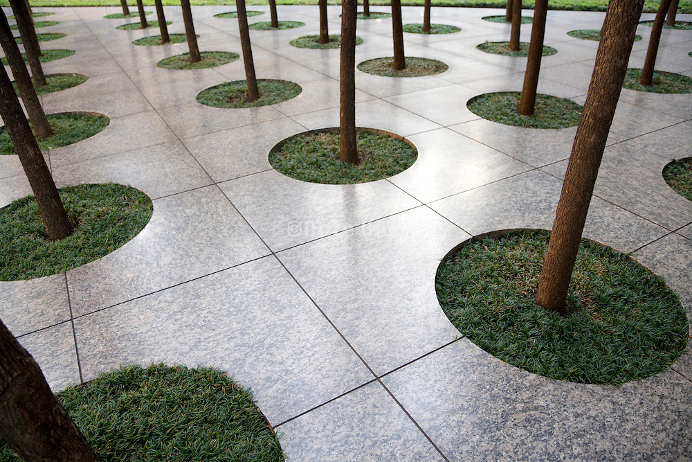 detail view of a city square with planted trees in a row