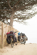 View of two bicycles on the beach under tree, Porto Vecchio, Corsica, France