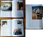 Photos from Palestine across a five-page feature in Polish magazine 'vege'.<br /> Client: Palestinian Animal League