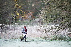 ©Licensed to London News Pictures 19/11/2019.<br /> Sidcup,UK. Temperatures drop overnight making for a very cold and frosty Tuesday morning. Freezing cold weather conditions at Footscray Meadows in Sidcup, South East London. Photo credit: Grant Falvey/LNP