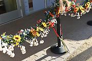 Desert Botanical Garden ribbon cutting ceremony