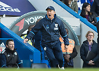 Football - 2016 / 2017 Premier League - Chelsea vs. West Bromwich Albion<br /> <br /> West Bromwich Manager Tony Pulis turns and screams at Stamford Bridge.<br /> <br /> COLORSPORT/DANIEL BEARHAM