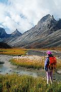 Arrigetch Peaks, Gates of the Arctic NP, Alaska, USA