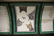 Cats not Ads campaign at Clapham Common tube station is the first campaign organised by Glimpse, an open and voluntary collective for creative people, Citizens Advertising Takeover Service (CATS) on 13th September 2016 in London, United Kingdom. A successful Kickstarter campaign ran to replace dozens of adverts at Clapham Common underground station, with pictures of cats. The idea was to help people think a bit differently about the world around them, and get inspired to change things for the better. (photo by Mike Kemp/In Pictures via Getty Images)