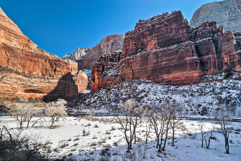 Winter, Zion National Park, Utah.<br /> <br /> Mid morning in Zion.  It was still cold in the shadows, and frost rimed the trees.  The trails were treacherous, and so we cruised the canyon road up to the Temple of Sinawava, where the Virgin River leaves the Narrows and enters a broader corridor.  But even the floodplain is described by massive formations, and must make a large horse shoe turn around The Organ and Angel's Landing, known as Big Bend.