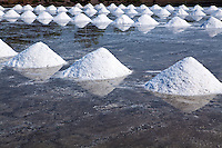 In Thailand, most of the salt used comes from brine salt farms, and the largest number of these salt farms are close to Bangkok in Samut Sakhorn. These large watery fields resemble rice paddis - except for the obvious absence of rice.  To make the salt, the fields are flooded with sea water pumped in from the nearby Gulf of Thailand, dammed, and left to dry naturally in the sun. When the water has evaporated, the salt is piled and taken away to be cleaned and bagged for sale.  Along Highway 35 there are plenty of vendors along the roadside selling huge bags of salt.  It takes about one month for the water to evaporate and create salt.