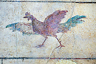 Roman Fresco of a chicken from The Large Columbarium in Villa Doria Panphilj, Rome. A columbarium is usually a type of tomb with walls lined by niches that hold urns containing the ashes of the dead.  Large columbaria were built in Rome between the end of the Republican Era and the Flavio Principality (second half of the first century AD).  Museo Nazionale Romano ( National Roman Museum), Rome, Italy. .<br /> <br /> If you prefer to buy from our ALAMY PHOTO LIBRARY  Collection visit : https://www.alamy.com/portfolio/paul-williams-funkystock/national-roman-museum-rome-fresco.html<br /> <br /> Visit our ROMAN ART & HISTORIC SITES PHOTO COLLECTIONS for more photos to download or buy as wall art prints https://funkystock.photoshelter.com/gallery-collection/The-Romans-Art-Artefacts-Antiquities-Historic-Sites-Pictures-Images/C0000r2uLJJo9_s0