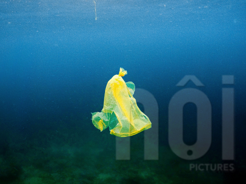 Plastic bag floats underwater, Luzon Island, Philippines, Southeast Asia, 2016
