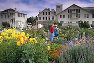Community Garden at Fort Mason, San Francisco, California